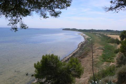 crique-de-bellevue-plage