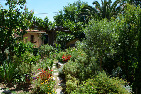 le-jardin-méditerranéen-au-printemps