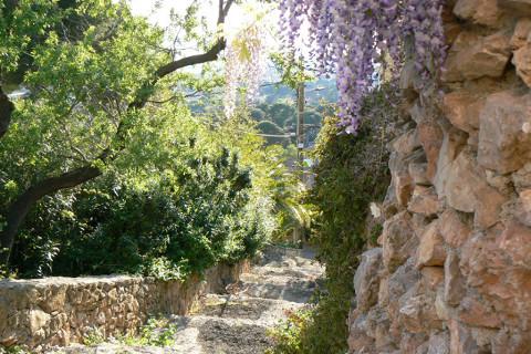 Les ruelles bordées de pierrse sèches du Mont Saint-Clair